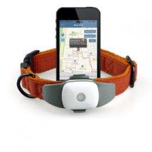 GPS-трекеры для животных